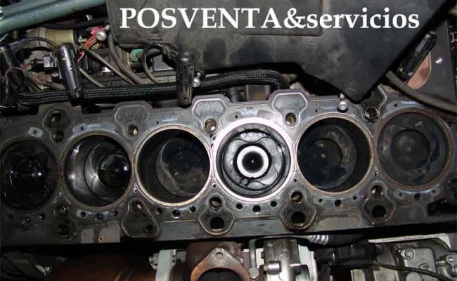 El motor de gasolina